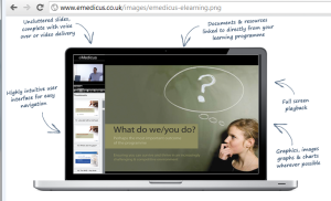 E-Learning Conceptual Layout of Screen: www.emedicus.co.uk