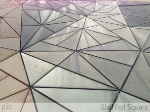 Close-up at Fed Square, Federico Viola 2013